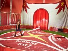 Circus verdubbelt aantal optredens in Zutphen: 'Haalbaar? Bittere noodzaak!'