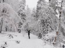 Bekijk hier de mooiste sneeuwfoto's uit de regio