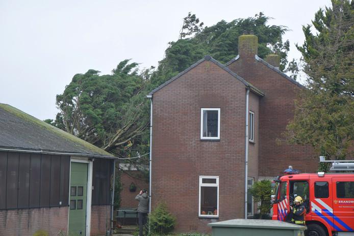 Het gaat om een heel grote boom die bovenop het huis belandde.