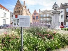 Universiteit van Gent gaat Brugs plein 'scannen', op zoek naar restanten van oude Sint-Janskerk