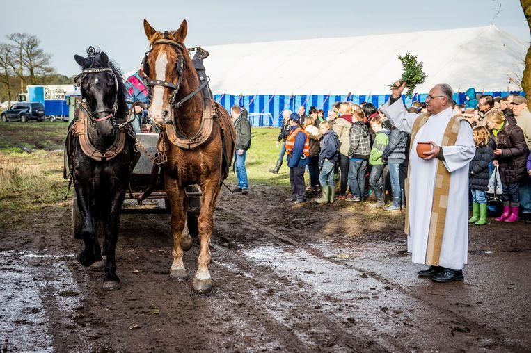 Archiefbeeld: de paardenwijding op Salphenkermis.