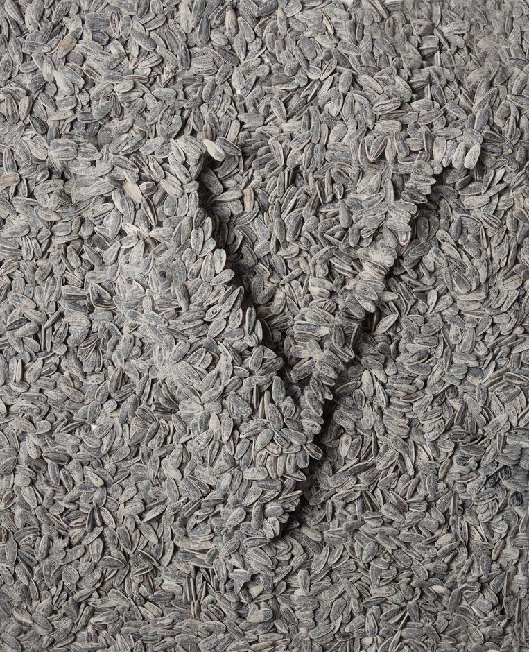 V in zonnebloempitten, gebaseerd op het kunstwerk Sunflower Seeds van Ai Weiwei. Beeld