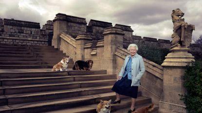 De Queen heeft geen corgi's meer