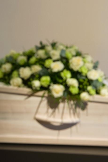 Geen subsidie voor crematie van foetussen