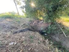 Un mort et une blessée grave dans un accident de la route à Hasselt