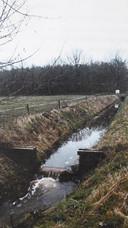 Voormalige turfvaart tussen Schijf en Rucphen. Ook dat is iets dat verwijst naar vroeger gebruik van de grond.