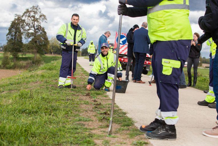 In Meeswijk ( Maasmechelen) worden 35.000 krokussen geplant ter herdenking van 'den dodendraad'.