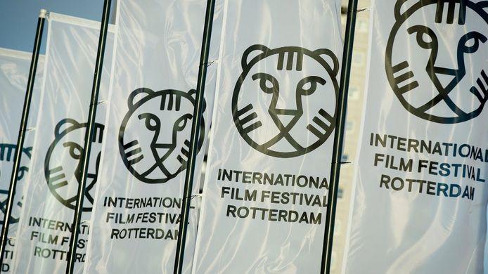 Het IFFR staat voor de 50ste editie