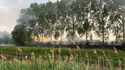 Brandweer moet uitrukken voor grasbrand langs jaagpad
