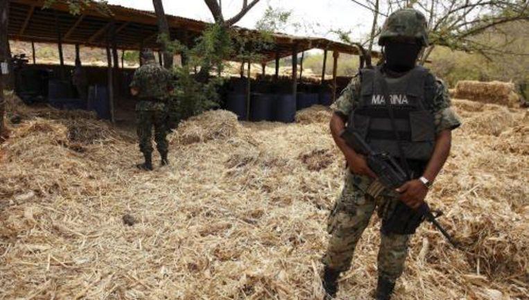 Een Mexicaanse soldaat bewaakt een gevonden drugslaboratorium. Foto ANP Beeld