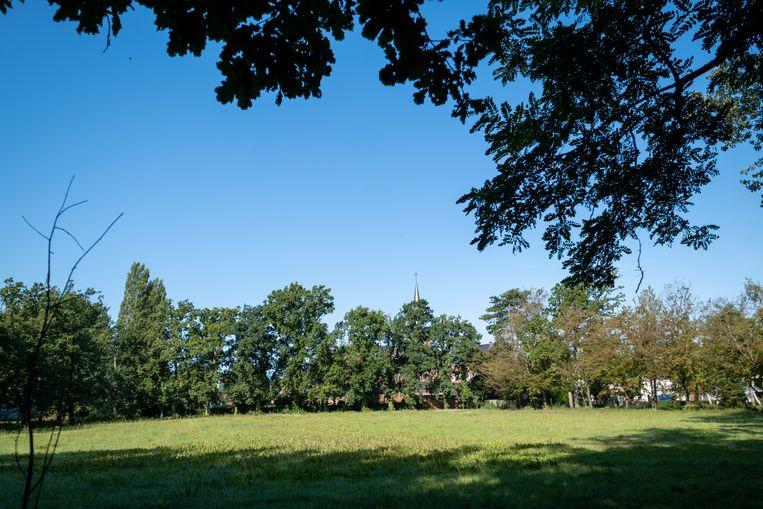 Het voormalig voetbalveld in het centrum van Heist-Goor