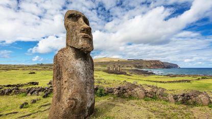 Op wandel met de moai
