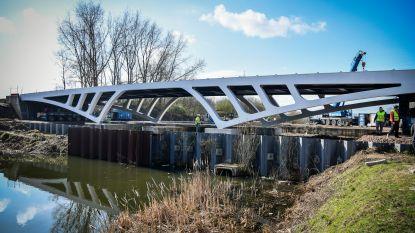 """Stad zoekt naam voor nieuwe brug over Oude Dender: """"Laten we ze Aya noemen, naar de moeder van de Vier Heemskinderen"""""""