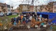 Stad deelt 335 planten en bomen uit in Elisabethwijk