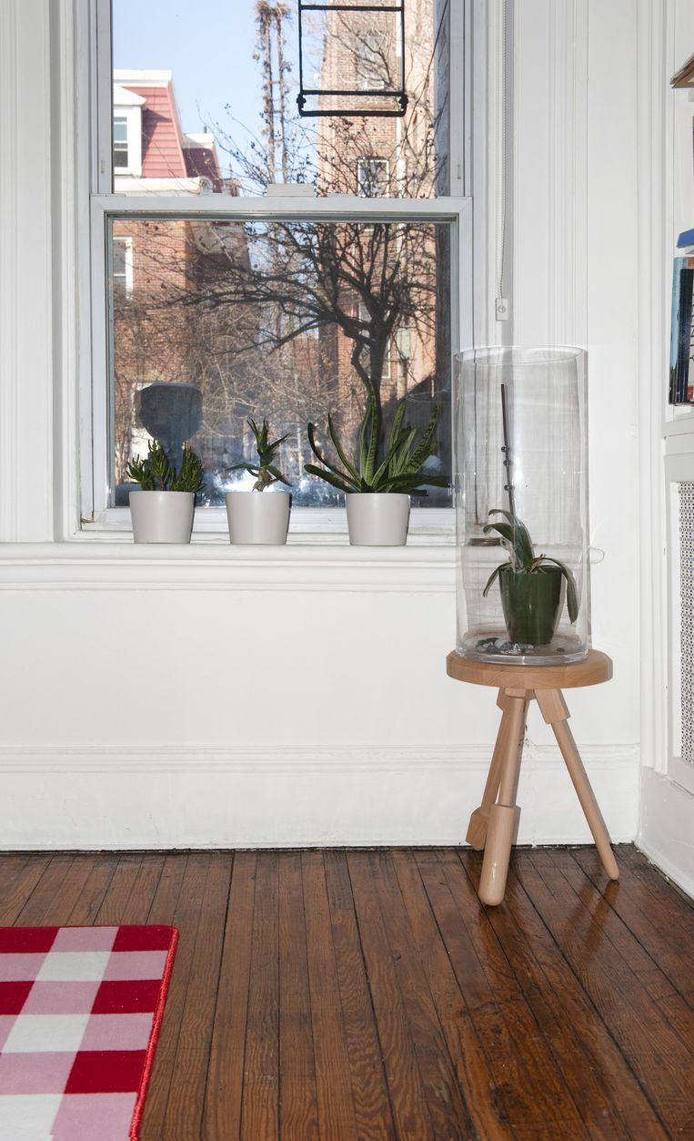 Alissia: 'Het grote voordeel van wonen in Brooklyn is onze tuin, waar we groente verbouwen.De enige planten die het binnen lang uithouden zijn vetplanten.' De houten Milk Stool is een ontwerp van Alissia voor het Franse merk Y'A Pas Le Feu Au Lac. Beeld Els Zweerink