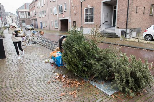 Een stapeltje zwerfkerstbomen 'siert' een ondergrondse container aan de Ambtmanstraat in Tiel.