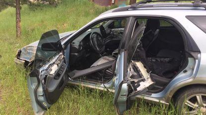 Beer belandt in auto en crasht ermee