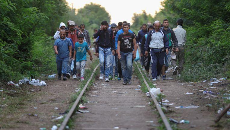 Migranten op het spoor bij de grens van Servië en Hongarije. Beeld getty