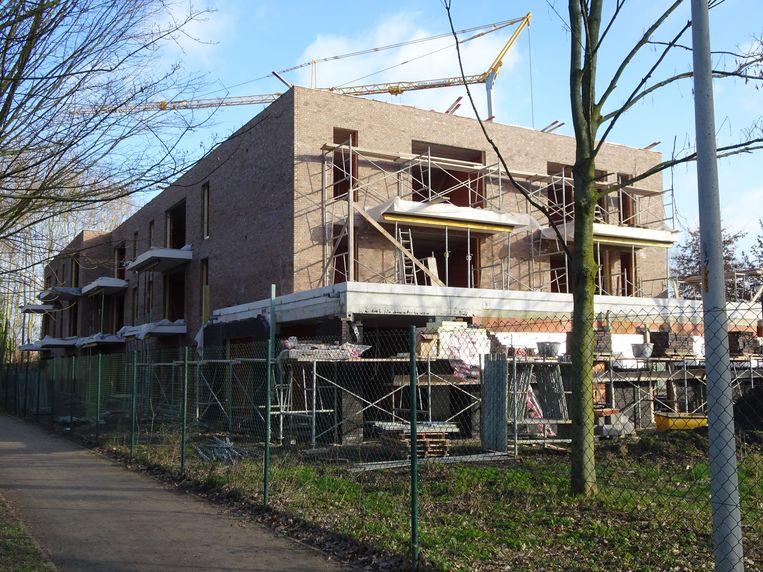 De DIO-woningen in Brecht worden momenteel gebouwd.