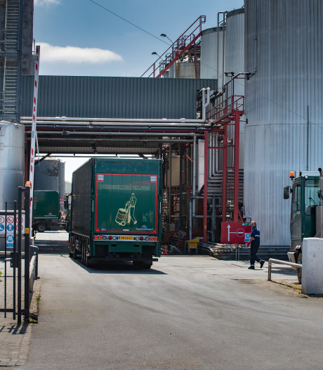 Baas Biodiesel Kampen bekent fraude en witwassen: 'Dom, dom, dom'