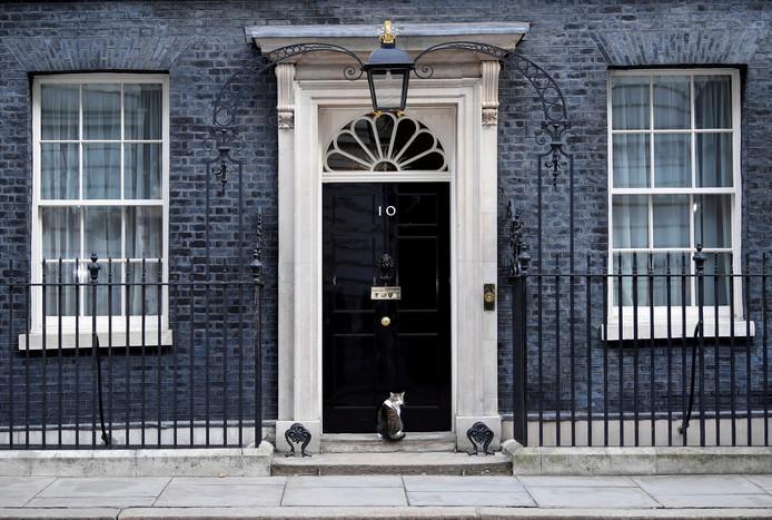 Larry, de kat van Downing Street 10 in Londen, wacht netjes voor de deur tot deze geopend wordt. Foto Toby Melville