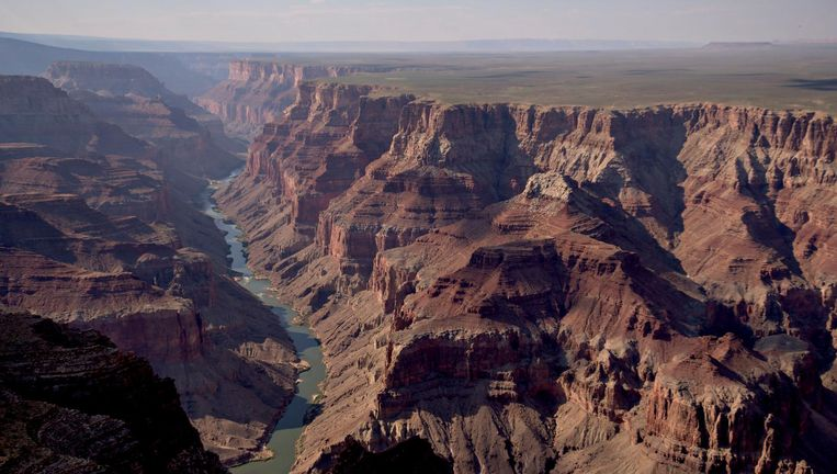 De Colorado-rivier, een van de plekken waar in de modder de geheimzinnige microbenfamilie werd gevonden Beeld Bloomberg via Getty Images