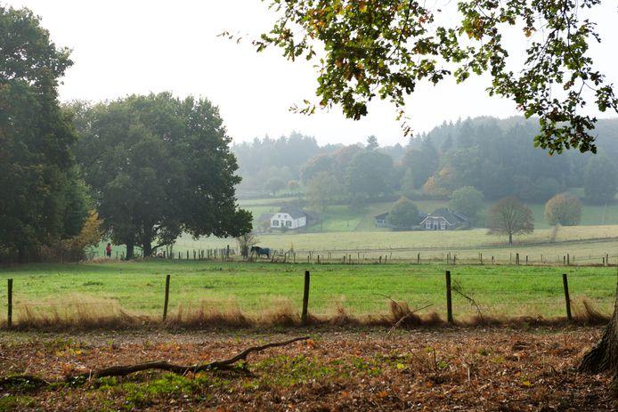 Uitzicht over Park Klarenbeek.