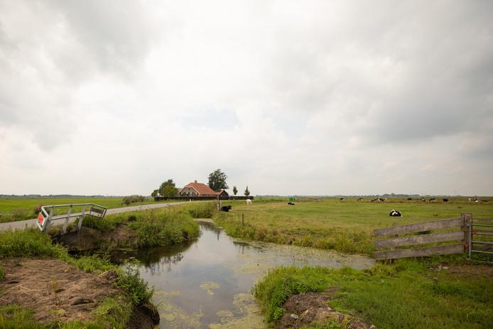 De eindeloze polder Arkemheen is vermoedelijk het oudste door mensen drooggelegde landbouwgebied.
