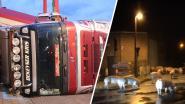 Vrachtwagen met 210 varkens kantelt tegen woning en op auto, bestuurder is rijbewijs kwijt