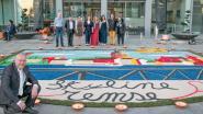 Kunsttapijt met skyline van Temse siert plein voor AC De Zaat
