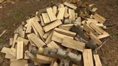 Gemeente organiseert openbare houtverkoop