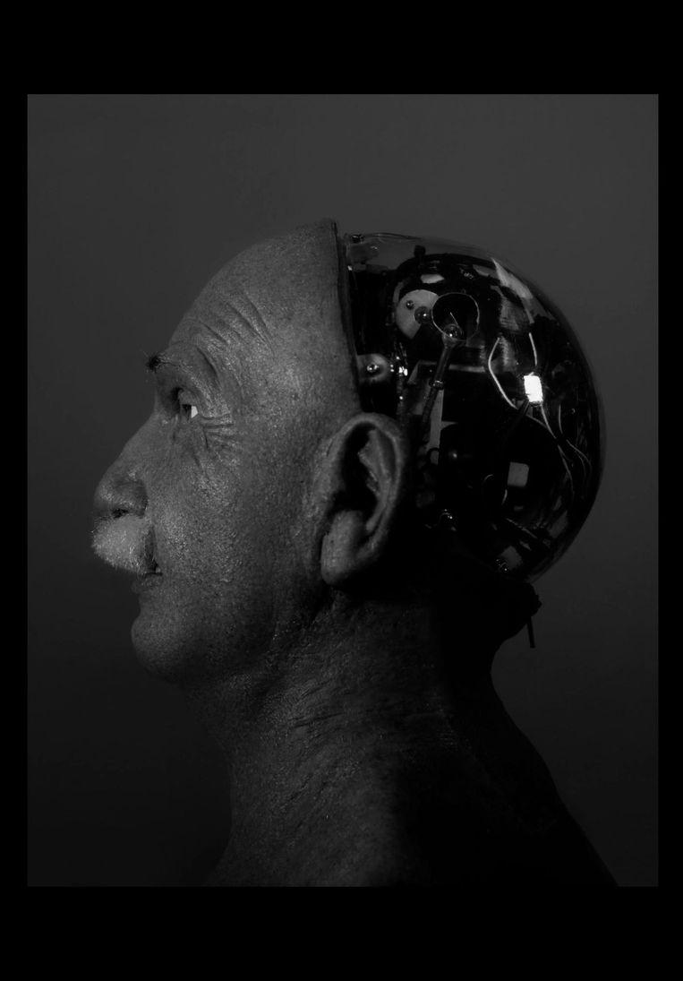 Einstein, uit de serie Androids, Wanda Tuerlinckx, 2016-2017. Beeld