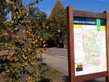 Wandelaars lokken met groene bushaltes in Ossendrecht en Putte