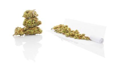Elke veertien dagen één kilogram cannabis kopen: drugdealers riskeren werkstraf