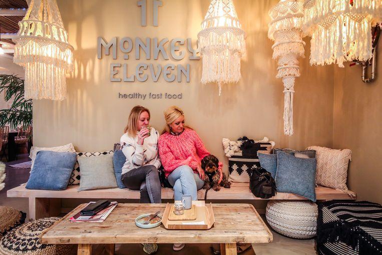 brugge : monkey eleven