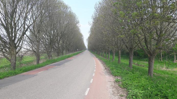 Rechte stuk Noordzeedijk, waar ongeval plaats had.