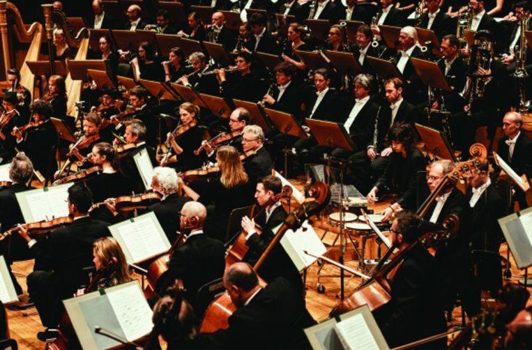 Het Antwerp Symphony Orchestra trekt naar Zuid-Amerika.