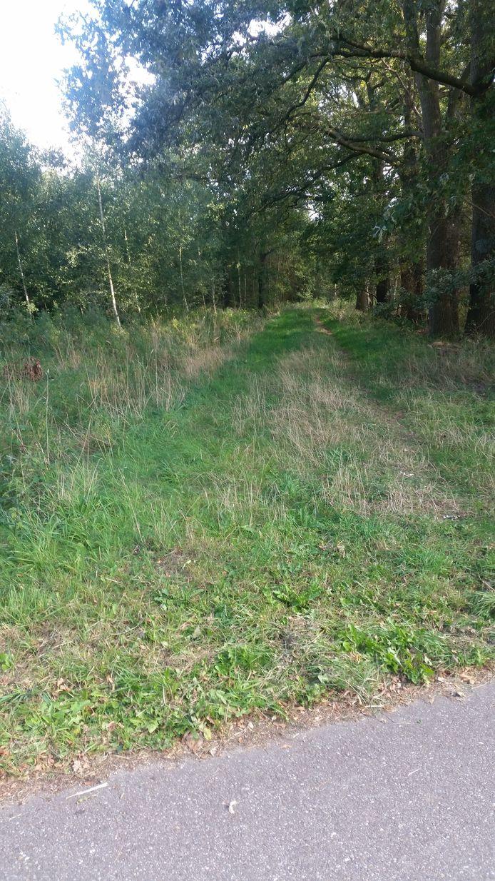 Een van de twee wegen die de gemeente Oisterwijk wil verkopen aan Landgoed 't Lot