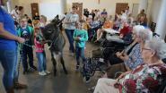 Ezel Fien, konijn Luna en hun vriendjes bezoeken rusthuisbewoners Sint-Antonius