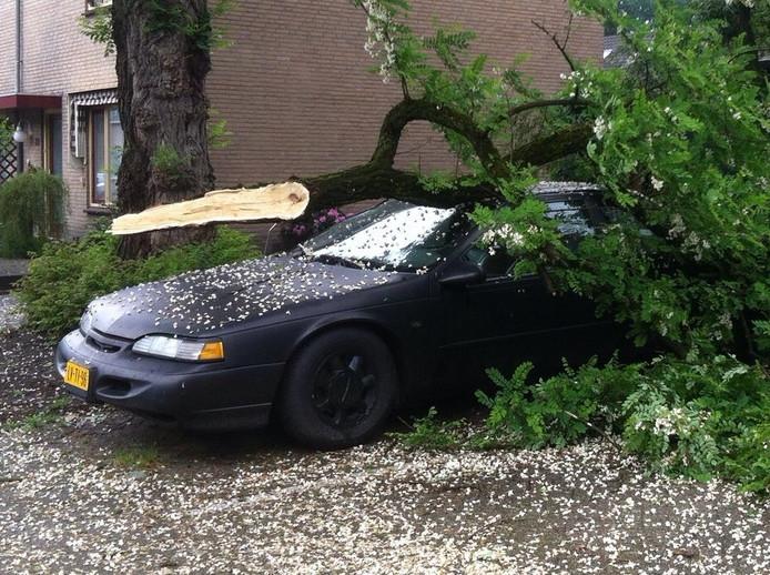 Aan de Niers in Deurne viel maandag rond 14.45 uur een grote afgebroken tak bovenop een geparkeerde auto. De auto raakte flink beschadigd. Niemand raakte gewond.