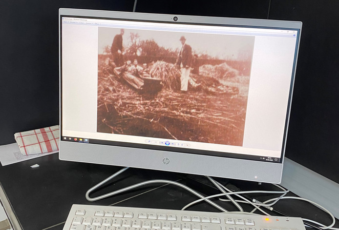 Oude foto van het heropgraven van de beelden na de bevrijding. Slimme wouwenaren hadden ze in stro onder de grond verstopt om ze te beschermen tegen oorlogsgeweld. De beelden waren onderdeel van het koorgestoelte dat in 1827 naar Wouw kwam. Dat kunstwerk was eigenlijk bedoeld voor een nog te stichten abdij van Hemiksen, maar werd geschonken aan de Lambertuskerk. Het koorgestoelte overleefde de oorlog niet.