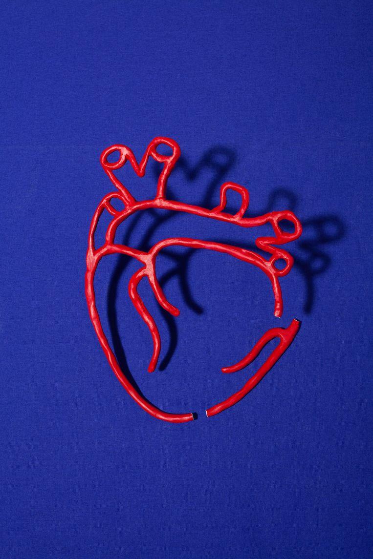 Die ene cel waardoor het hart zichzelf kan repareren, die bestaat niet...