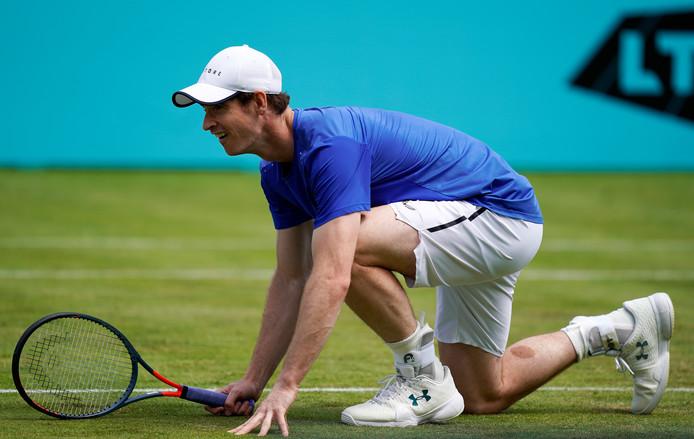 Andy Murray a retrouvé le plaisir de jouer... sans douleur.