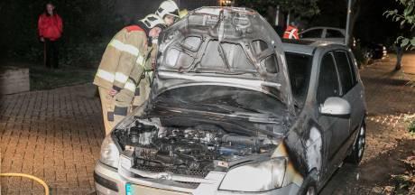 Politie hoopt op beelden en getuigen van autobrand Doesburg