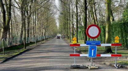 """Gemeente verdedigt verkeersmaatregelen na wegverzakking Lage Kaart: """"Omleiding werd massaal genegeerd dus we moesten wel ingrijpen"""""""