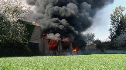 Zware brand in leegstaande loods in Wilsele blijkt aangestoken