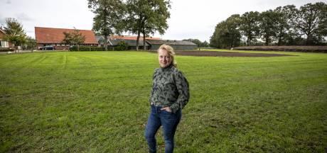 Kalveren en campers: dat gaat prima naast elkaar in Geesteren: 'Het lijkt me grandioos mooi!'