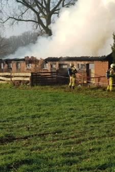 Brand legt grote schuur in Haarlo volledig in de as
