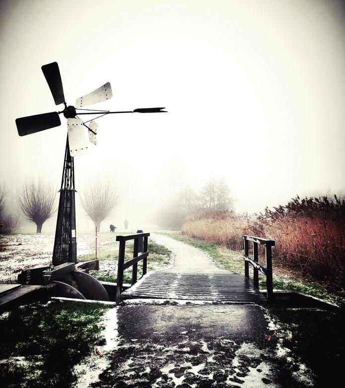 Angela Canbaz maakte deze ijskoude maar mooie wandeling in Hillegersberg.