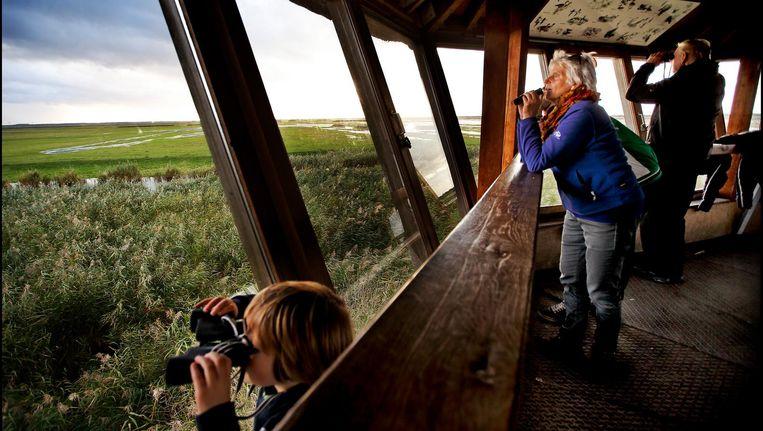 Vanuit observatiecentrum de Zeearend turen bezoekers over de Oostvaardersplassen. Beeld Pim Ras
